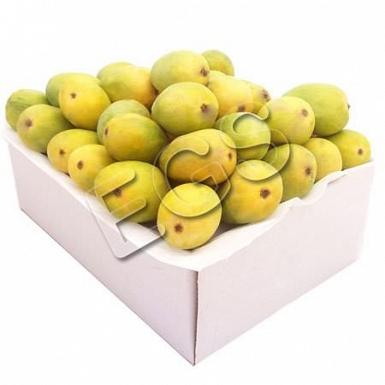 Anwer Ratol Mangoes in Box