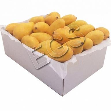 Sindhri Mangoes in Box