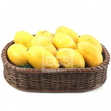 Mango Sensation