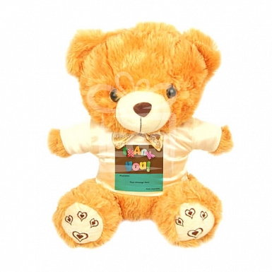 Super Thank You - Personalised Bear