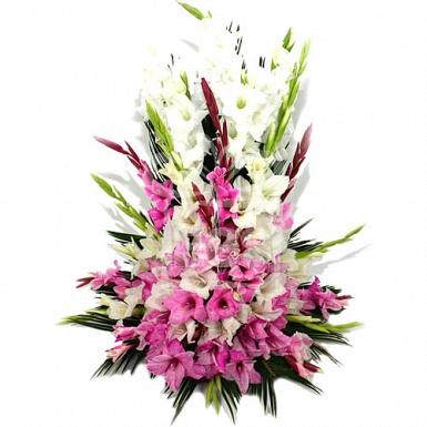 White and Pink Gladiolus Basket