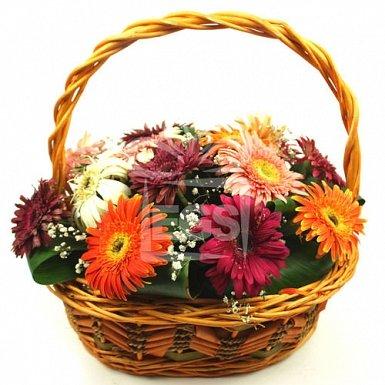 Gerbera Carnival Basket