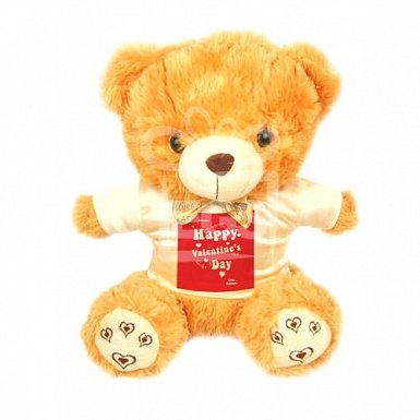 Happy Valentines Day - Personalised Bear