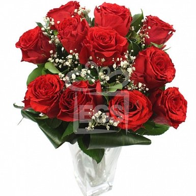 Pretty Red Roses