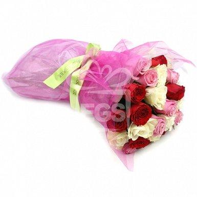 Rose Fiesta
