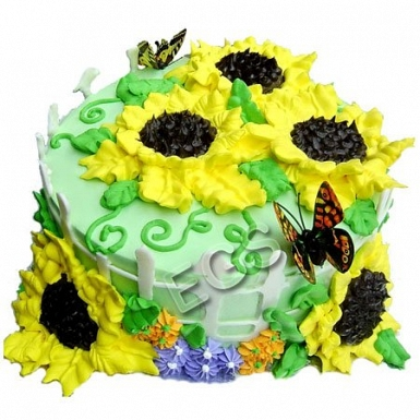 2Lbs Sunny Days Chocolate Cake delivery to Pakistan